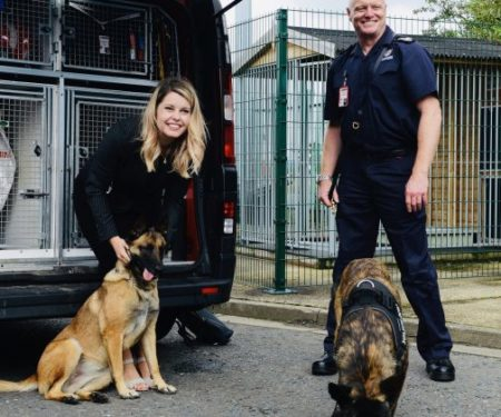 Read more about The search is on for dog-loving volunteers